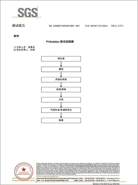 材通管业SGS检测报告第六页(中文)